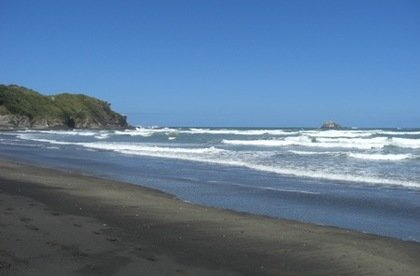 Muriwai Main Beach