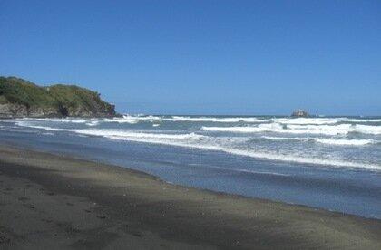 Muriwai Main Beach