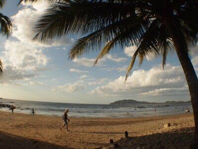 La Oveja Negra Hostel & Surf  Camp, Tamarindo Costa Rica