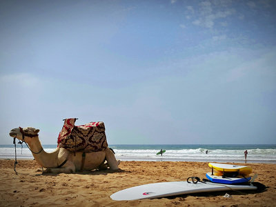 Surf Camp Yoga Morocco