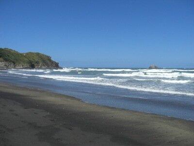 Muriwai Beach | surf spot