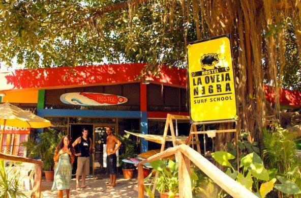 La Oveja Negra Surf Camp & Hostel in Tamarindo Costa Rica