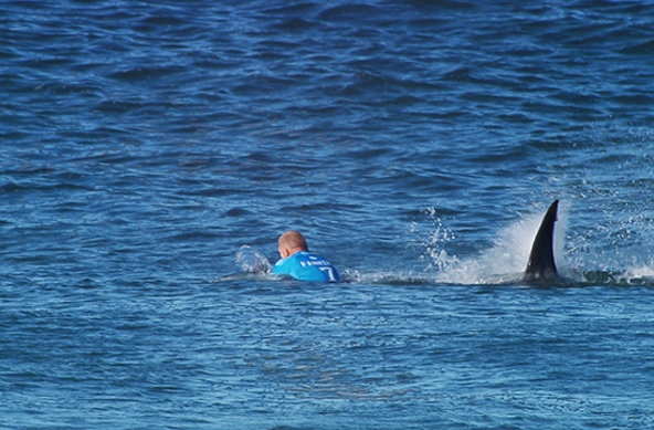 Image: WSL | Hai-Angriff auf Mick Fanning bei J-Bay Open 2015