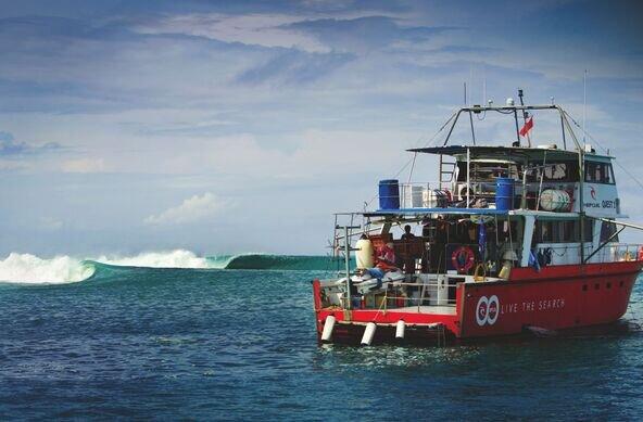 (c) Rip Curl   Surf Filmabend im Open Air Kino Mond & Sterne
