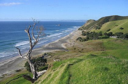 Mangawhai Heads | surf spot