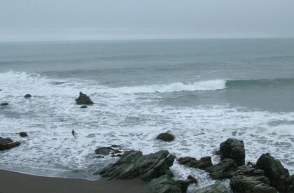 Punta de Lobos | Chile